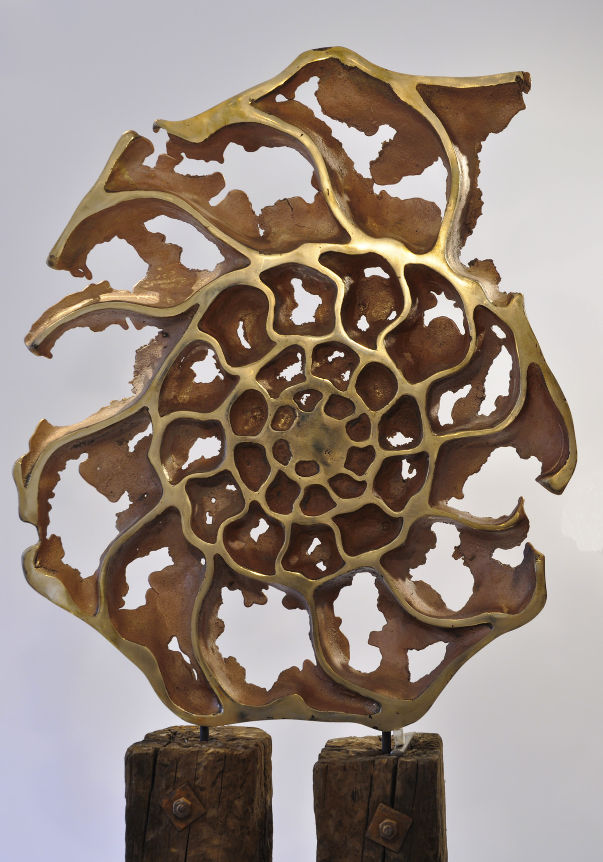 Ammonite slice front bronze, garden sculpture inspired by geology fossil Christie's Auction House London by Mark Reed