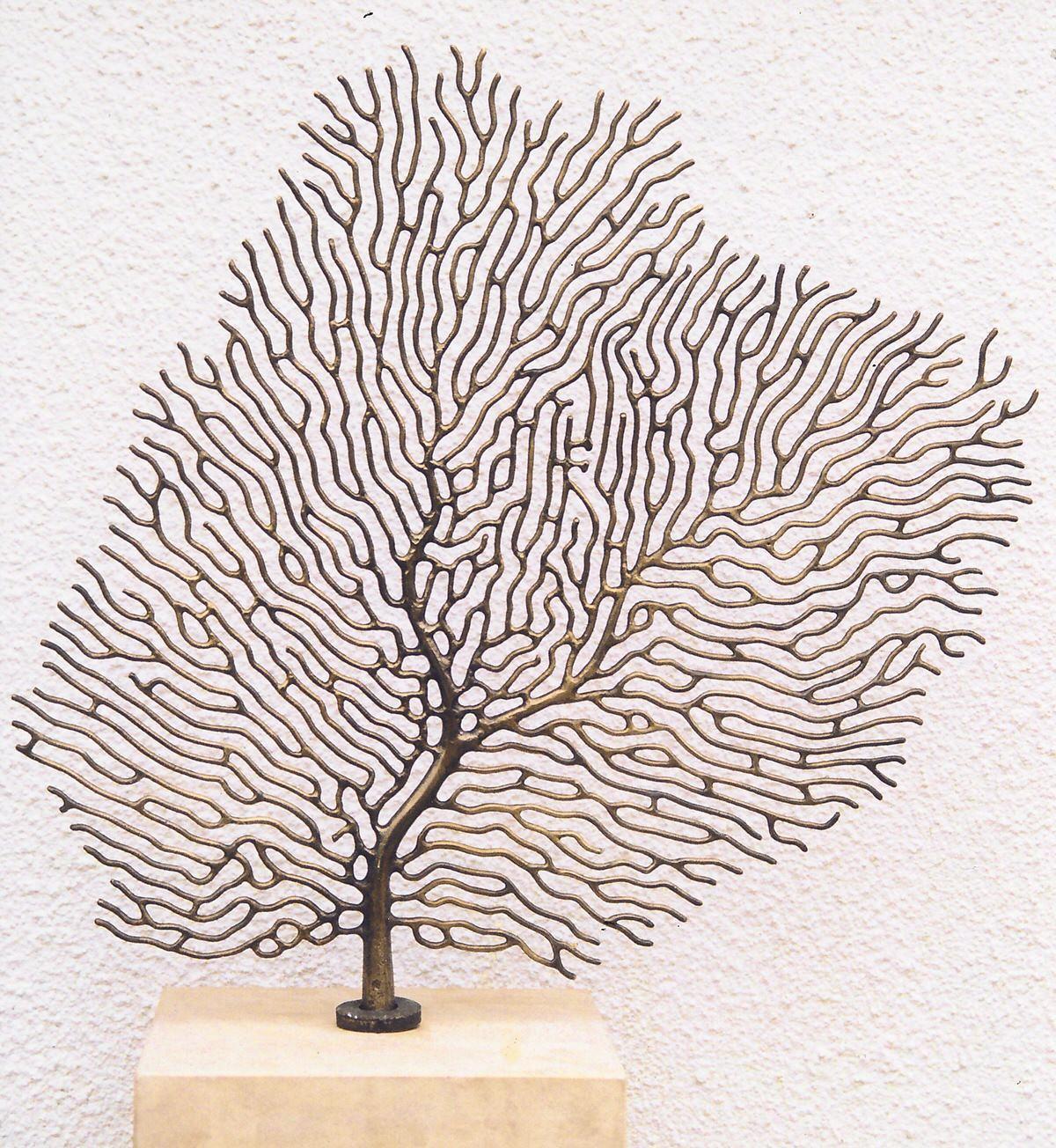 Fan coral mark reed sculpture fan coral publicscrutiny Images