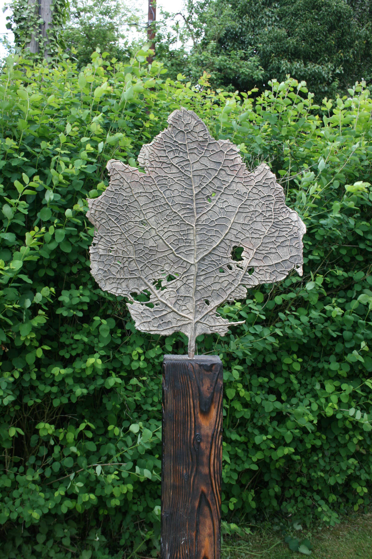 Skeleton Leaf Bronze sculpture by Mark Reed garden sculpture