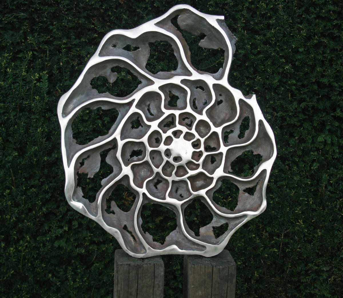 Ammonite 'inside' sculpture- bronze ammonite fossil geology sculpture corporate sculpture for hotels by Mark Reed