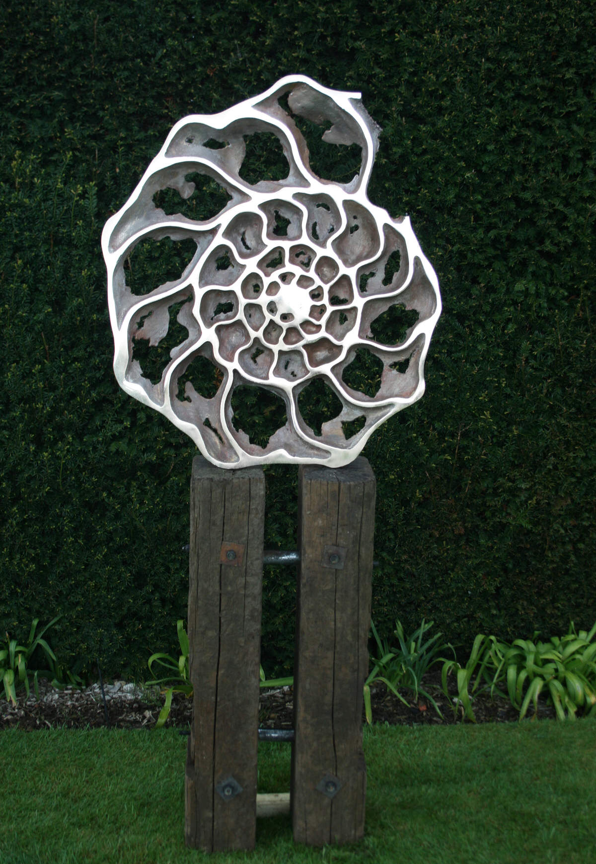 Ammonite 'inside' sculpture- bronze sculpture ammonite fossil sculpture Natural History Museum by Mark Reed