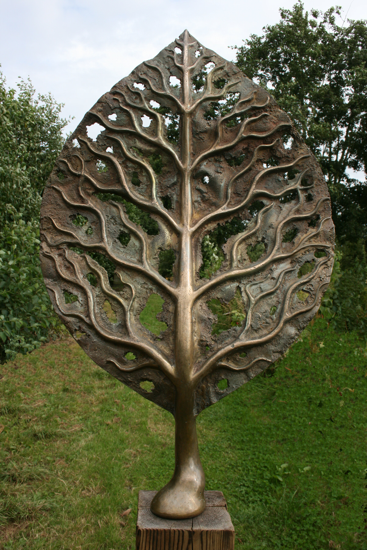 Life Leaf Medium bronze garden sculpture trees art tree sculpture sculpture for the home by Mark Reed