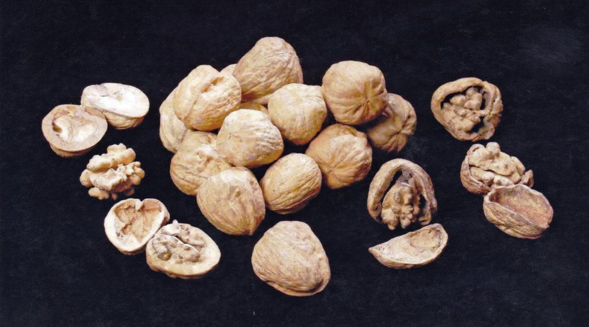 Bronze walnut sculptures by British Sculptor Mark Reed unique bespoke interior accessories V&A Museum